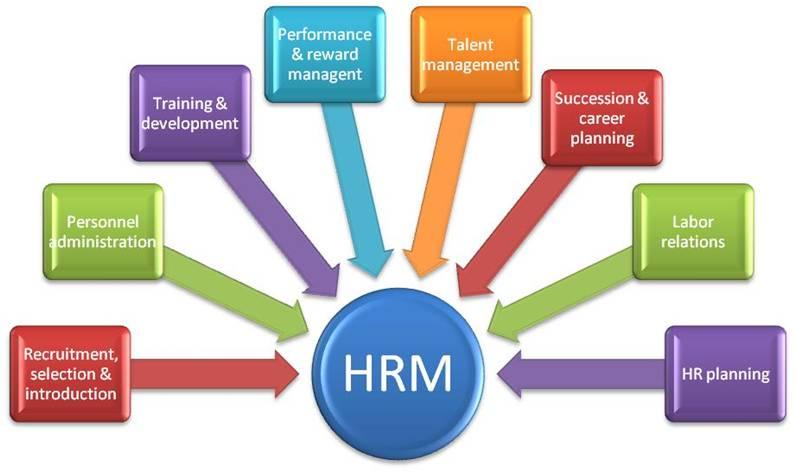 Proficiency Certificate In Human Resource Management Skills Academy